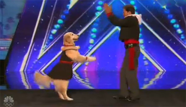 Jose and Carrie Dancing Dog AGT 2016