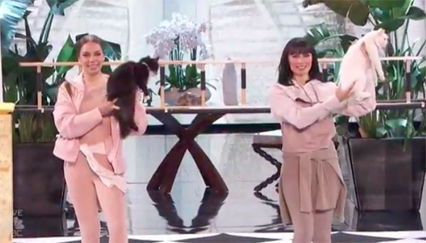 Savitsky Cats America's Got Talent 2018 Live Quarterfinals Performance